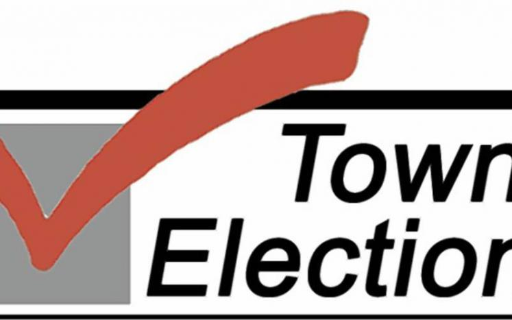 2021 Annual town election preliminary results